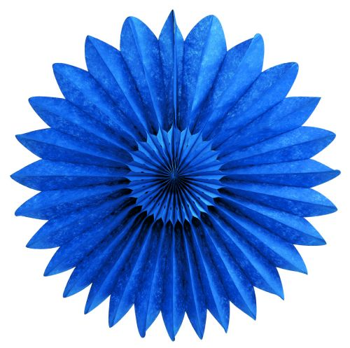 Blue Fan - Product #5437-4