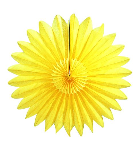 Yellow Fan - Product #5441-4