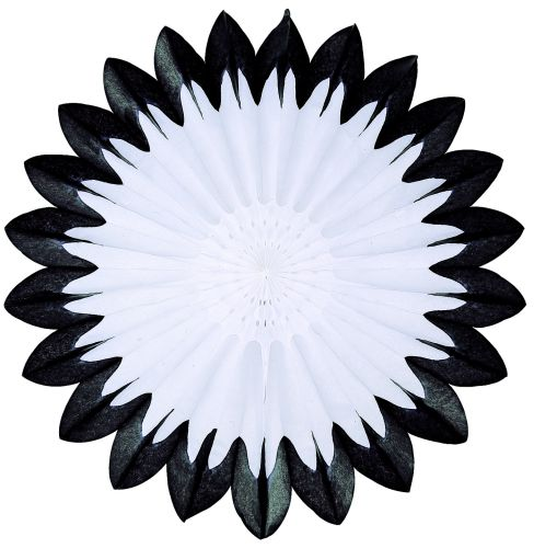 Black & White Fan Burst - Product #5460-1